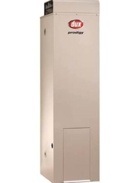 Dux Prodigy 4 Natural Gas Storage 135L